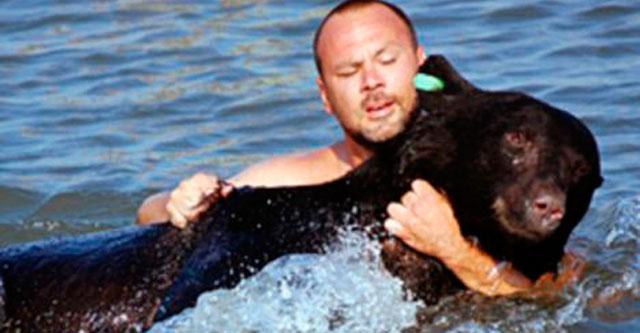 Спасение медведя