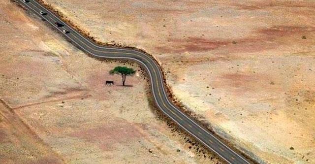 Уважение к природе