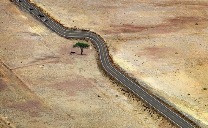 Подборка фотографий, которые показывают, как нужно уважать природу
