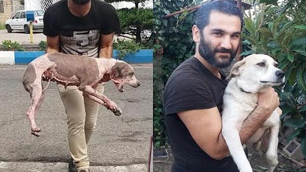Мужчина спас собаку без шерсти. Сейчас хвостатую просто не узнать!