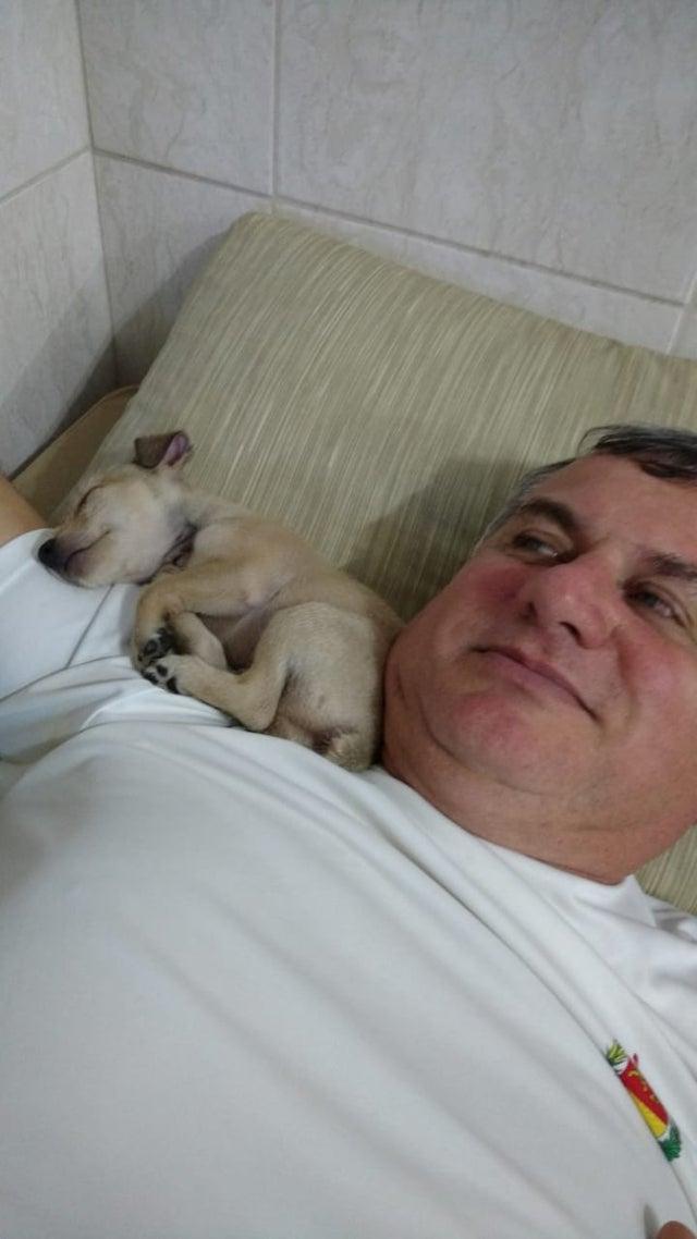 Отцы, которые были против домашних животных, теперь жить без них не могут!