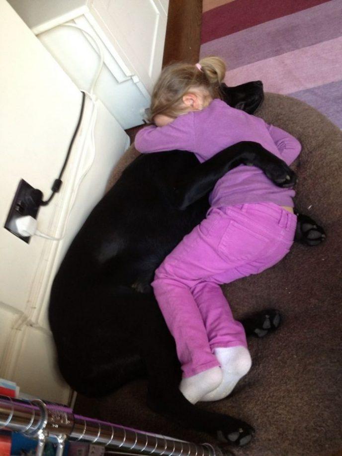 Фотографии, которые докажут, что верность и доброта животных восхищают