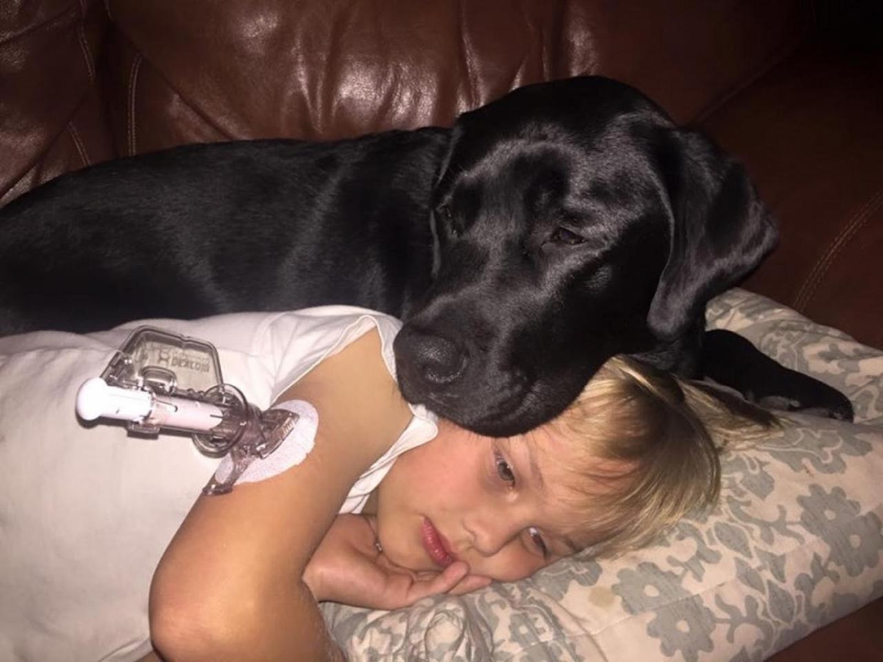 Женщина проснулась от того, что пес ее стягивал с кровати. Он буквально силой потащил ее в комнату сына…