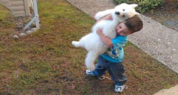 Снимки, которые докажут, что каждый ребенок заслуживает на такого друга
