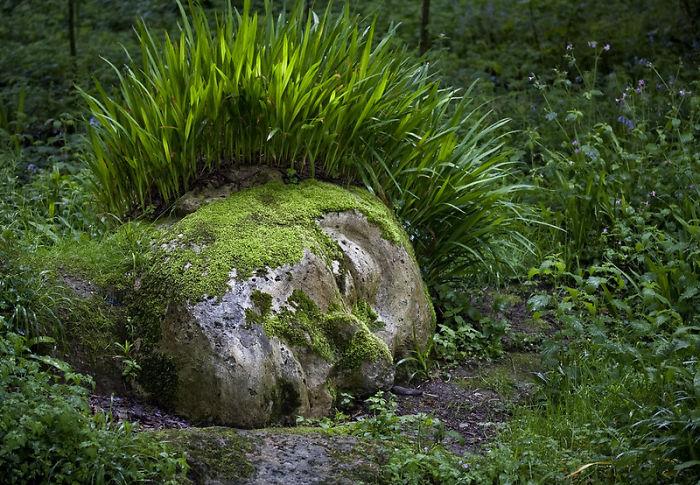 Потрясающая скульптура, которая меняет внешний вид в зависимости от сезона