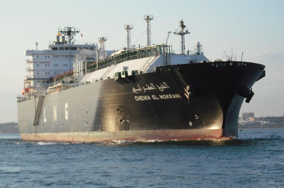 Моряк прыгнул с 12-метровой палубы чтобы спасти кита, который запутался в сетях