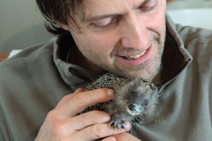 Ветеринар спас крошечного ежонка, а тот изменил всю его жизнь