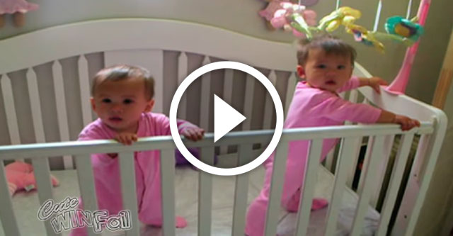 Самые синхронные близнецы в мире