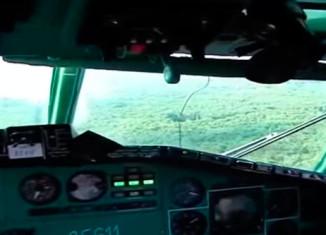 как работают пилоты