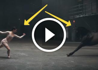 Лошадь танцует в рекламе лака для ногтей