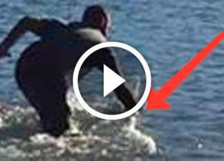 мужчина поймал акулу голыми руками