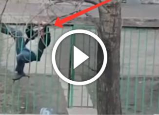 пьяный мужик перелезает через забор