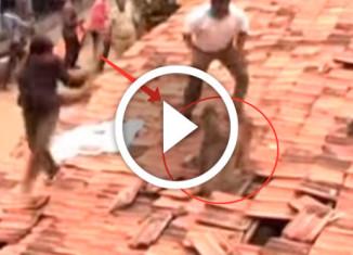 рабочие меняли крышу