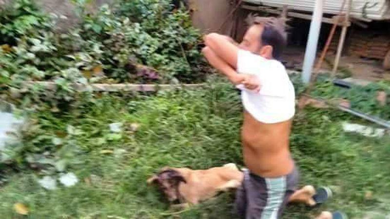 мужчина спас собаку