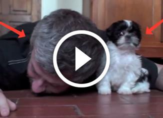мужчина играет с щенком