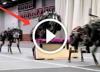 робот-гепард прыгает через барьер