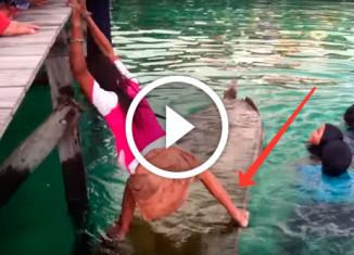 девочка спасла лодку