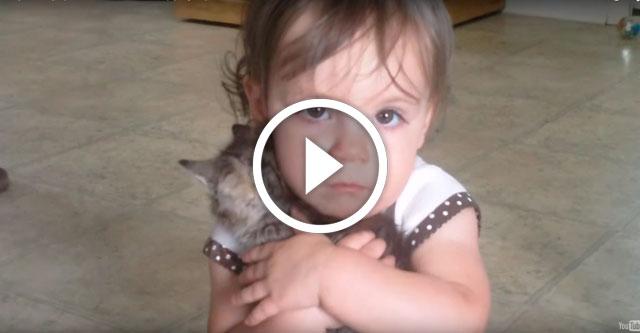 ребенку подарили котенка