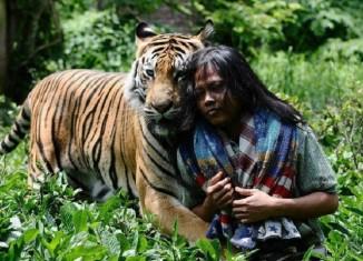 Дружба тигра и человека