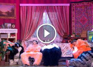 Бабушка и Коты Уральские пельмени