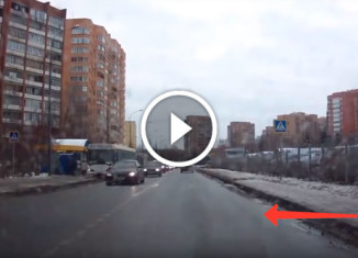 Мужчина помог щенку перейти дорогу