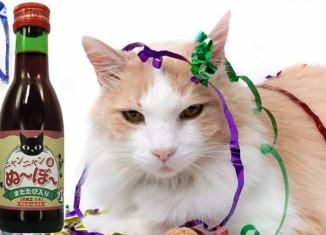 Вино для кошек