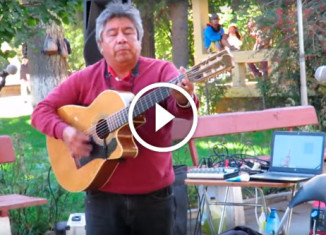Чилийский уличный музыкант