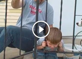 Мальчик застрял в заборе