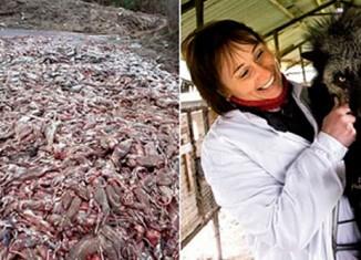 Меховые фермы