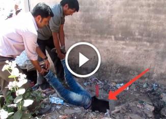 Спасение собаки из канализации