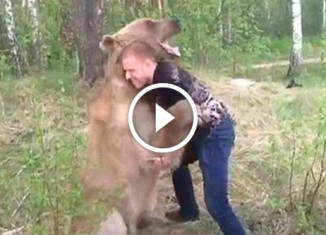 Борьба медведя и мужчины