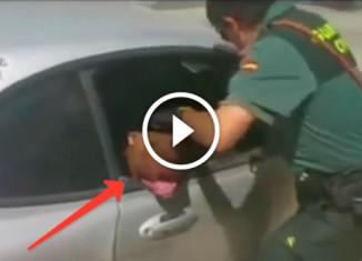 Полицейский спас пса