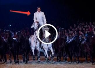 Трюки на лошадях