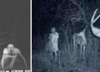 Жуткие кадры с охотничьих камер