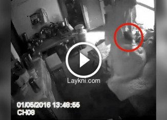 Установил дома скрытую камеру и увидел фото 771-442