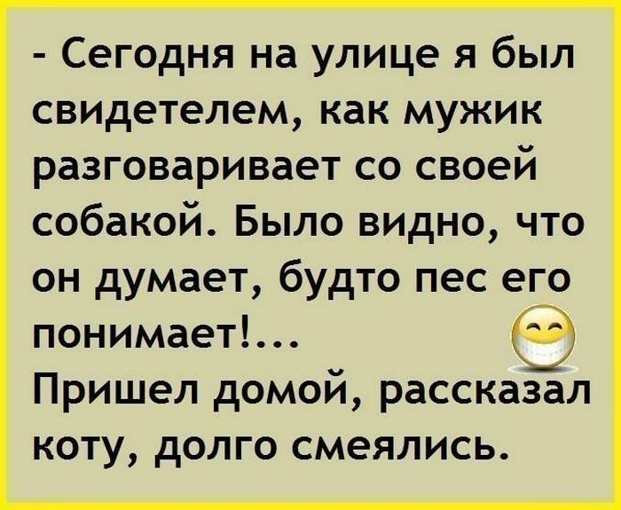 Мужик На Улице Рассказывает Анекдоты